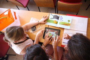 Digital tools in Bilingual Education seem to be a major concern